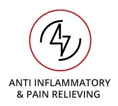 Anti Inflamatory Icon - Home
